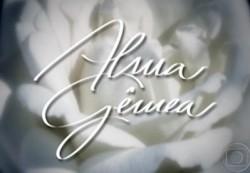 Alma Gêmea